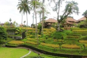 Ubud, Bali